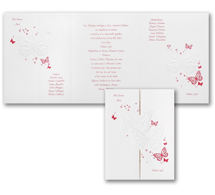Invitations Quinceanera as perfect invitations ideas